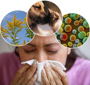 alergii tratate prin kineto